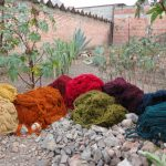 All the beautiful colors of yarn!